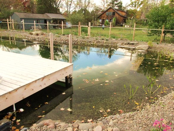Natural Swimming Pools - Natural Landscaping, Gardening, and ...