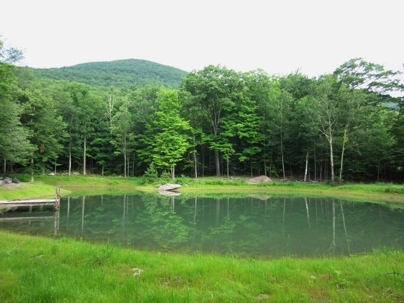 Natural Garden Pond Maintenance : Pond Construction, Building, Repair, and Maintenance in the Catskills