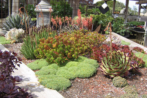 The Rock Garden - Natural Landscaping, Gardening, and Landscape ...