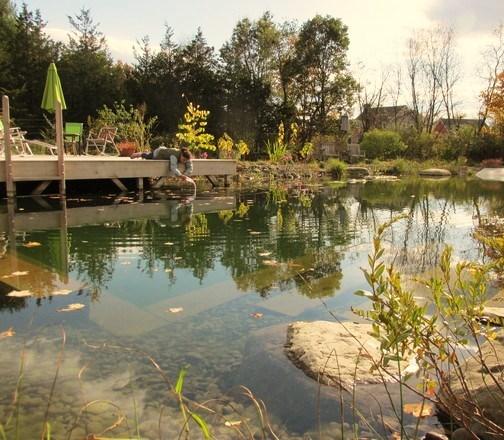 Landscape Installation Natural Landscaping Gardening